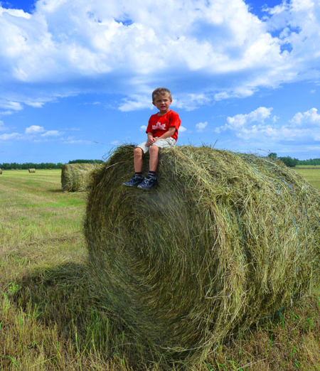 Grayson on Hay Bale