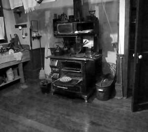 marie lake stove bw3