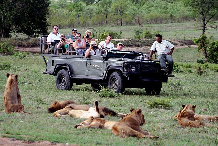 Sabi-Sands-Savanna-game-drive